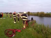 Brandweer haalt paard uit Burgwerdervaart