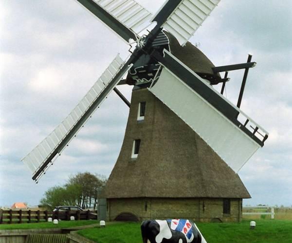 Open dag molens en gemalen in Súdwest-Fryslân