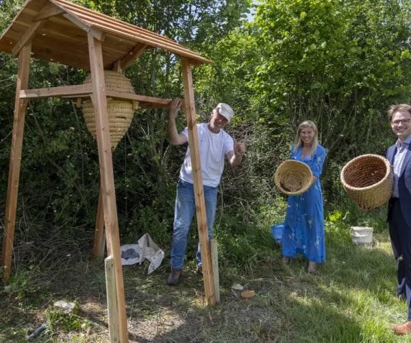 Hangkorf met bijenzwerm geplaatst in Heempark Nijland