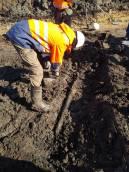 Bijzondere vondst op slotdag opgraving Warns
